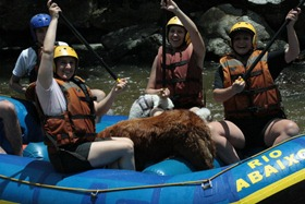 Pets Adventure 8 (56_1) (14)