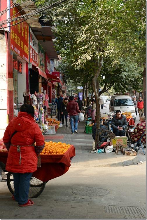 DSC_6928LR_Chengdu
