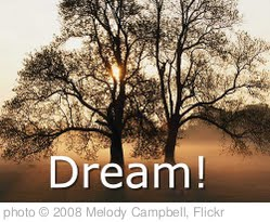 'Dream!' photo (c) 2008, Melody Campbell - license: http://creativecommons.org/licenses/by/2.0/