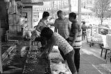 Shanghai - Marché poisson - A la pêche