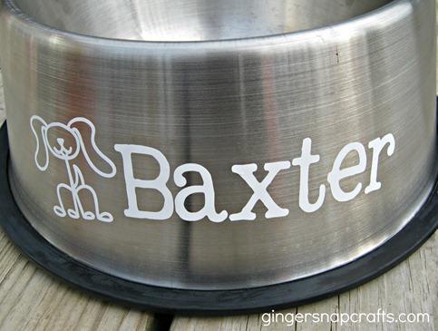 dog bowl metal