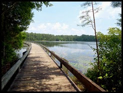 02b - Cheraw SP - Boardwalk along Lake Juniper
