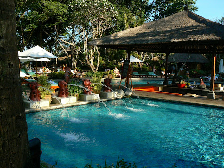 Hotel Hyatt Sanur: the pool