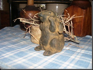beeswax flop eared bunny
