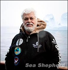 Paul Watson, acting as an observer, during Operation Zero Tolerance. Photo: Sea Shepherd