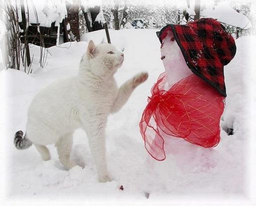 Девушка, снимите шляпу, мне кажется, что мы знакомы!..