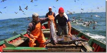 pescaartesanal-720x340