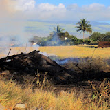 North edge of fire, just mauka of path