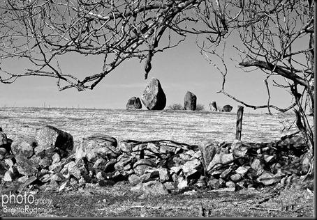 bjareBW_20120313_stones