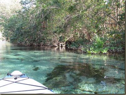 Weeki Wachi River