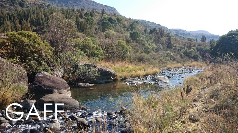 Bushmans River.jpg