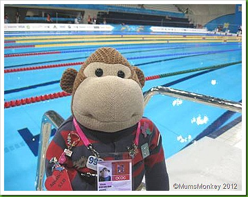 Vinnie last look at pool