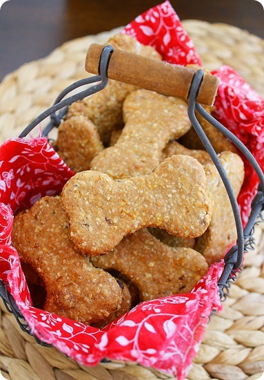 When one of my taste tester tried these homemade dog biscuits, it was all she could do to hold still and wait for the treat, while a line of drool hit the floor. If you have yet to make your own dog treats, this is the recipe to start with. Your efforts will be highly rewarded, and appreciated.