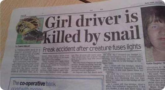 snail killer