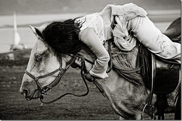 Horse brakes by Thomas Jeppesen