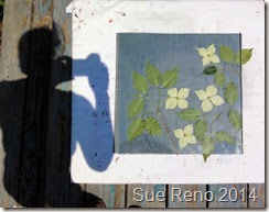 Sue Reno, Kousa Dogwood, work in progress