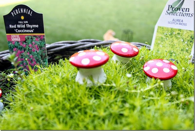 Fairy Garden 014