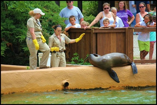 Zoo4 424