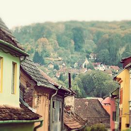 Little town by Aurel Garceava - Buildings & Architecture Homes ( nature, village, architecture, town )