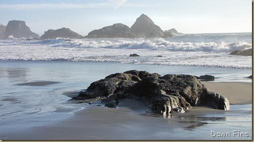 Harris Beach_238