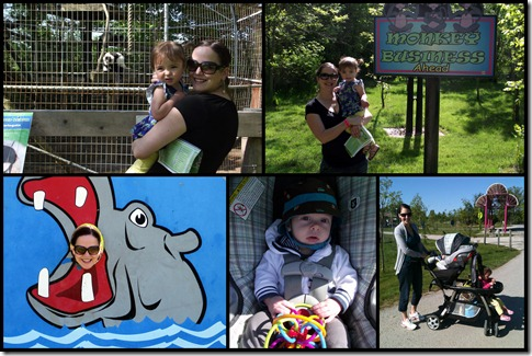Zoo Pics for Blog2