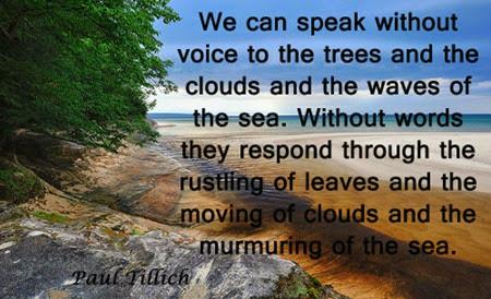 speak_without_voice