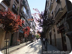 madrid2011 008
