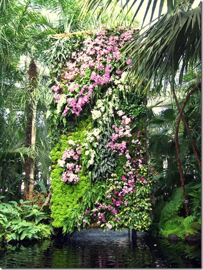 nybg-orchid-show-vertical-garden-bronx-botanic-gardens