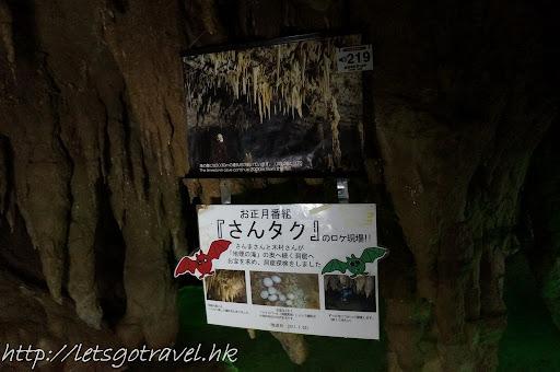 20111230okinawa129.JPG