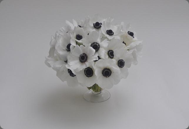 monobotanical medDSC_0229  L'Oasis floral design