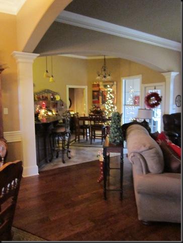 Christmas 2011 255