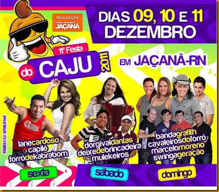 Festa do Caju_2011-2