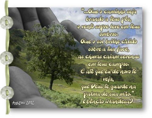 CAMINHOS BRANDOS