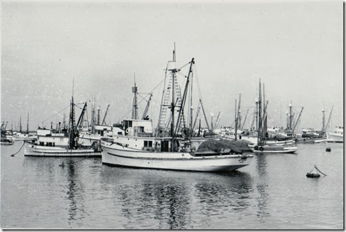 Fish Fleet