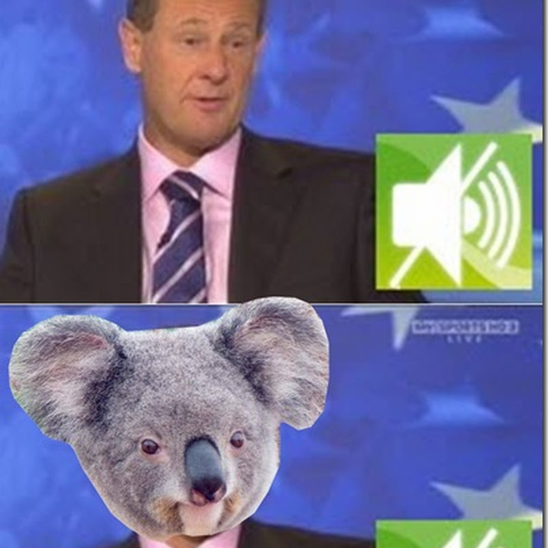 Separated At Birth: Mark Roe and Kevin The Koala