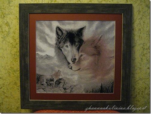 Волки 003
