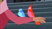 1-08 les oiseaux
