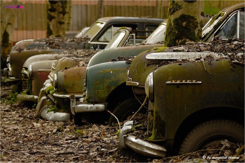 cars_021.jpg