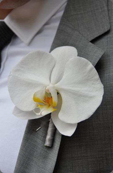 603550_355317924544025_912900037_n hacman floral