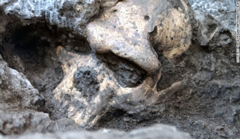 131017111530-01-acient-skull-1017-horizontal-gallery
