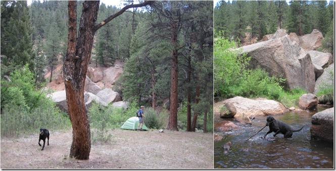 Goose Creek Campsite
