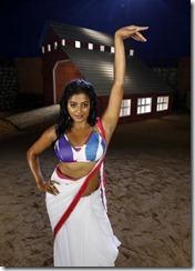 priyamani-hot-stills-in-tikka-movie009