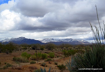 Awoke to snow near North Ranch