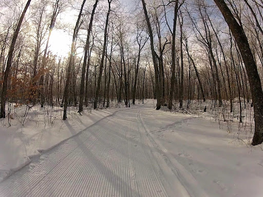 Mother North Star packed with skier made track on side. Roy's Run, Island Lake and Wavy Gravy in this condition. Despite no track, some good skiing to be had. Recommened to walk through the marshy areas on these trails.