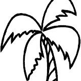 palmera-2.jpg