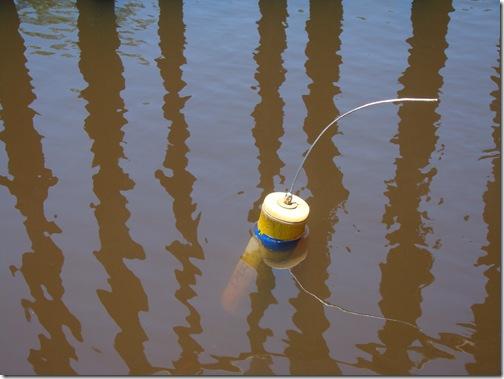 Boia de Identificação do Peixe Boi