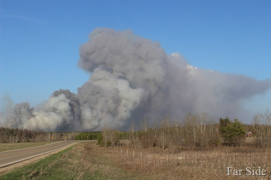 Wildfire south of Park Rapids