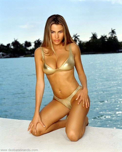 sofia vergara linda sensual sexy sedutora hot photos pictures fotos Gloria Pritchett desbratinando  (62)