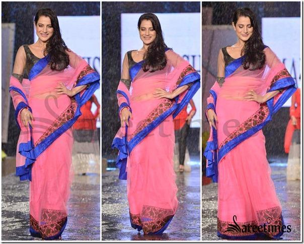 Amisha_Patel_Manish_Malhotra_Saree (1)