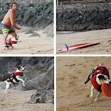 Al est aussi un adepte du Frisbee qu'il pratique sur le sable de la côte des basques
